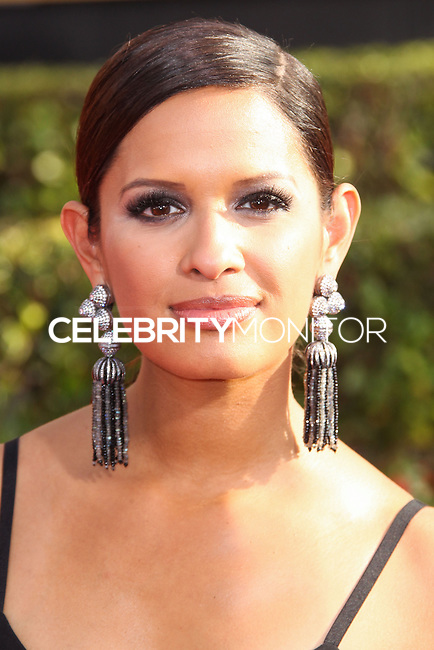 LOS ANGELES, CA - JANUARY 18: Rocsi Diaz at the 20th Annual Screen Actors Guild Awards held at The Shrine Auditorium on January 18, 2014 in Los Angeles, California. (Photo by Xavier Collin/Celebrity Monitor)