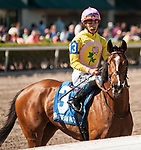 HALLANDALE BEACH, FL - March 3: Thewayiam, #3, with Jose Ortiz aboard, wins the Grade III Herecomesthebride Stakes at Gulfstream on March 3, 2018 in Hallandale Beach, FL. (Photo by Carson Dennis/Eclipse Sportswire/Getty Images.)