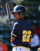 Michigan Wolverines Softball outfielder Sierra Lawrence (22) at bat during a game against the Bethune-Cookman on February 9, 2014 at the USF Softball Stadium in Tampa, Florida.  Michigan defeated Bethune-Cookman 12-1.  (Copyright Mike Janes Photography)