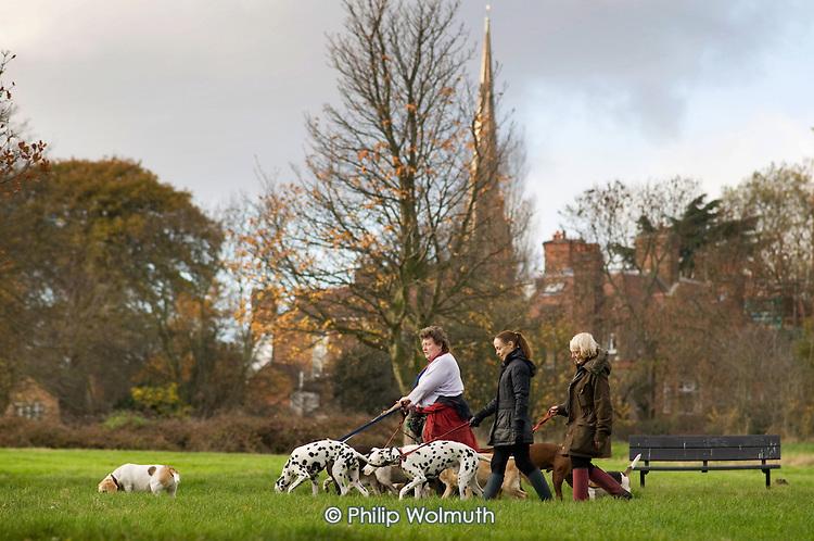 Dog-walkers on Hampstead Heath
