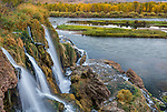 Caribou National Forest, Idaho: Fall Creek Falls flows into the Snake River, Swan Valley