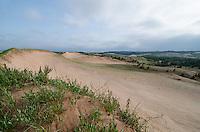 The pristine landscape of Grand Sable Dunes along the Pictured Rocks National Lakeshore. Grand Marais, MI