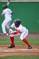Potomac Nationals left fielder Telmito Agustin (5) squares to bunt during the first game of a doubleheader against the Salem Red Sox on May 13, 2017 at G. Richard Pfitzner Stadium in Woodbridge, Virginia.  Potomac defeated Salem 6-0.  (Mike Janes/Four Seam Images)