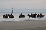 August 15, 2021, Deauville (France) - Horses from the Barrière Deauville Polo Cup relaxing after training at the beach in Deauville. [Copyright (c) Sandra Scherning/Eclipse Sportswire)]