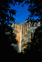 Early morning light on Angel Falls, highest waterfall in world (979m) in Canaima National Park, Auyantepui table mountain, Venezuela