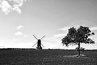 This 18th century windmill is the last of it's kind in the county, and was possibly the last working windmill with cloth sails in Britain. <br /> It operated commercially until 1939. The sails were recently replaced and the windmill restored to its former glory. Stevington, Bedfordshire. October 22nd 2020