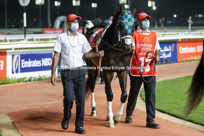 March 27 2021: THEGREATCOLLECTION #13, in the post parade for the Dubai World Cup at Meydan Racecourse, Dubai, UAE. Shamela Hanley/Eclipse Sportswire/CSM