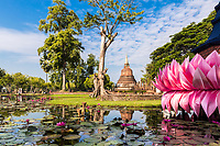 Wat Chana Songkhram pagoda and huge, pink Loy Krathong lotus flower decoration with beautiful pond reflection, in Sukhothai Historical Park, Thailand