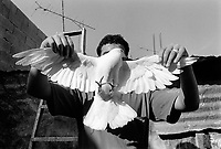 State of Palestine. West Bank. Balata Camp. Palestinian refugees. A young man holds a dove in both hands. The bird is a symbol of peace but also is fed to be eaten by people. Balata Camp is a Palestinian refugee camp established in the northern West Bank in 1950, adjacent to the city of Nablus. It is the largest refugee camp in the West Bank. Balata Camp is densely populated with 30,000 residents in an area of 0.25 square kilometers. In 1991, Balata Camp was living under Isreal's occupation and rules as part as the Occuppied Territories. In the 1980s and 1990s, Balata residents played a leading role in the uprisings known as the First Intifada and the Second Intifada. Balata Camp is since 1993 under palestinian authority, located in the A zone. The Palestinian National Authority (PA or PNA) was the interim self-government body established to govern Areas A and B of the West Bank as a consequence of the 1993 Oslo Accords. Following elections in 2006, its authority had extended only in areas A and B of the West Bank. Since January 2013, the Fatah-controlled Palestinian Authority uses the name State of Palestine on official documents. © 1991 Didier Ruef