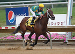 July 21, 2012  Dust and Diamonds, Mike Smith up, wins the Dashing Beauty Stakes at  Delaware Park, Stanton, DE. Trainer is Steve Asmussen. ©Joan Fairman Kanes/Eclipse Sportswire