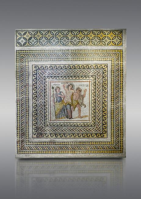 Roman mosaics - Dionysus Mosaic. Poseidon Villa Ancient Zeugama, 3rd century AD . Zeugma Mosaic Museum, Gaziantep, Turkey.