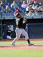 Yermin Mercedes - Chicago White Sox 2020 spring training (Bill Mitchell)