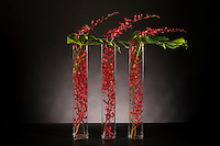 Dramatic floral arrangement of three vases of red flowers by floral artist Tomasi Boselawa