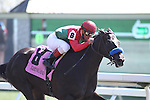 Zonga Zing with Javier Castellano up wins the 6th race at Keeneland Race Course. 04.08.2010