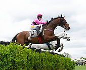1st Claiming Hurdle (apprentice riders) - Mighty Mark