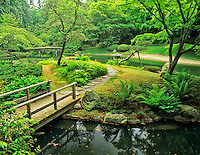 Pond and bridge at Japanese Garden. Nitobe Garden. Vancouver, BC