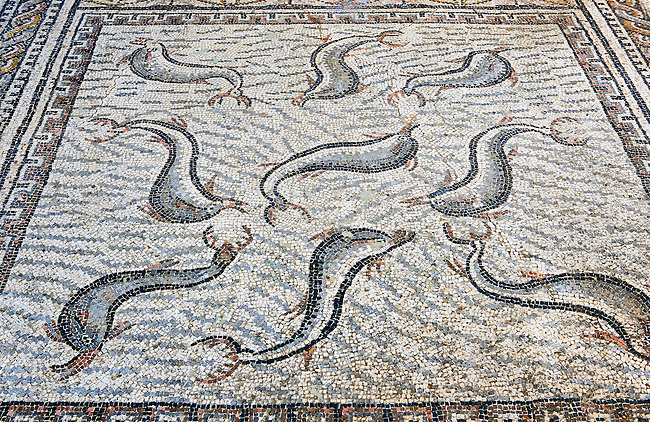 Roman mosaics of Dolphins, a Roman good luck symbol from The House of Orpheus. Volubilis Archaeological Site, near Meknes, Morocco