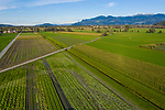 Drohnenaufnahme: Liechtenstein.<br /> Ruggell<br /> Foto: ©Paul J. Trummer
