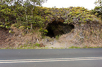 The entrance to Cave #3 along Old Mamalahoa Hwy., Big Island.