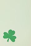 Green shamrock on white background