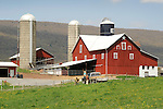 Snyder farm near Elimsport, PA.