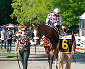 11th Travers Stakes - Tiz the Law