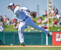 14 March 2014: Detroit Tigers infielder Hernan Perez in action during a Spring Training Game against the Washington Nationals at Joker Marchant Stadium in Lakeland, Florida. The Tigers defeated the Nationals 12-6 in Grapefruit League play. Mandatory Credit: Ed Wolfstein Photo *** RAW (NEF) Image File Available ***