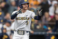 Michigan Wolverines shortstop Michael Brdar (9) celebrates after scoring a run against the Michigan State Spartans on May 19, 2017 at Ray Fisher Stadium in Ann Arbor, Michigan. Michigan defeated Michigan State 11-6. (Andrew Woolley/Four Seam Images)