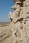 Mit Pferd verziehrte Säule im Vittala Tempel in Hampi, Karnataka, Indien