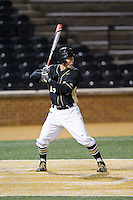Keegan Maronpot (13) of the Wake Forest Demon Deacons at bat against the Delaware Blue Hens at Wake Forest Baseball Park on February 13, 2015 in Winston-Salem, North Carolina.  The Demon Deacons defeated the Blue Hens 3-2.  (Brian Westerholt/Four Seam Images)