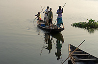 The Wetlands of Kolkata, this environmental   threatened area about 20 km out side Kolkata still provides a good source of fish harvested in fishponds. Kolkata, West Bengal, India