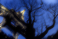 View of Eiffel Tower through trees at twilight Paris France.