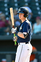Catcher Dan Rizzie (5) of the Columbia Fireflies bats in a game against the Augusta GreenJackets on Sunday, July 30, 2017, at Spirit Communications Park in Columbia, South Carolina. Augusta won, 6-0. (Tom Priddy/Four Seam Images)