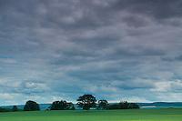 Tyninghame Links, East Lothian