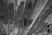"""Wooden Sky<br /> From """"Miami in Black and White"""" series.<br /> Bayfront Park, Downtown Miami, FL"""