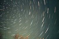 ASTRONOMY<br /> Star Trail; Circumpolar display<br /> New Rochelle, NY