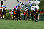 30 April 2010: Doubles Partner with Garrett Gomez up takes the lead in the G2 American Turf Stakes at Churchill Downs in Louisville, Kentucky.