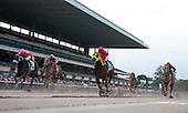 NY-bred Giant Ryan, center, shocks the field in the Vosburgh at Belmont Park on Saturday Oct. 1, 2011.