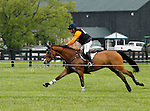 LEXINGTON, KY - APRIL 30: #1 Fernhill Fugitive and Phillip Dutton compete in the Cross Country Test for the Rolex Kentucky 3-Day Event at the Kentucky Horse Park.  April 30, 2016 in Lexington, Kentucky. (Photo by Candice Chavez/Eclipse Sportswire/Getty Images)
