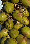 Rio de Janeiro, Brazil. Coconuts.