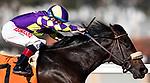 November 28, 2020: Parnelli with Drayden Van Dyke wins a maiden race at Del Mar Racecourse in Del Mar, California on November 28, 2020. Evers/Eclipse Sportswire/CSM