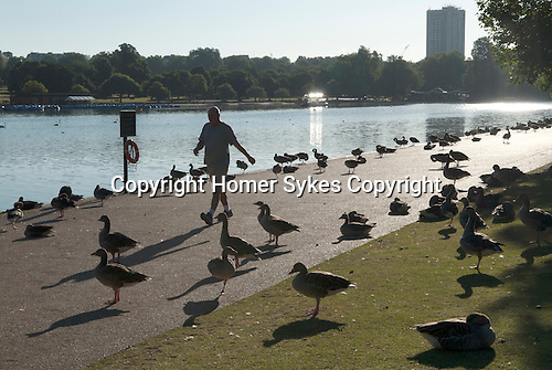 Serpentine Lake in Hyde Park London. Men exercising