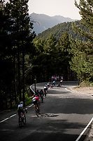 in the descent of the Col de Beixalis<br /> <br /> Stage 15 from Céret to Andorra la Vella (191km)<br /> 108th Tour de France 2021 (2.UWT)<br /> <br /> ©kramon