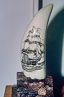 sperm whale,  Physeter macrocephalus, teeth, scrimshaw, whaling museum, Azores, Portugal