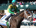 Summer of Fun and Eddie Castro finish 3rd in the JPMorgan Chase Jessamine at Keeneland Racecourse.October 11, 2012.