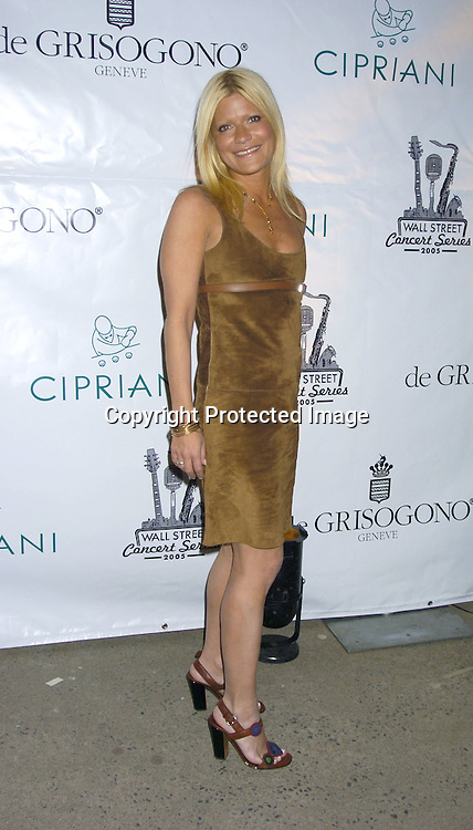 Lizzie Grubman..at The 2005 Wall Street Concert Series benefitting Wall Street Rising on March 15, 2005 at Cipriani. Rod Stewart was performing tonight. ..Photo by Robin Platzer, Twin Images