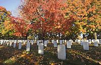 Arlington Cemetery Washington DC