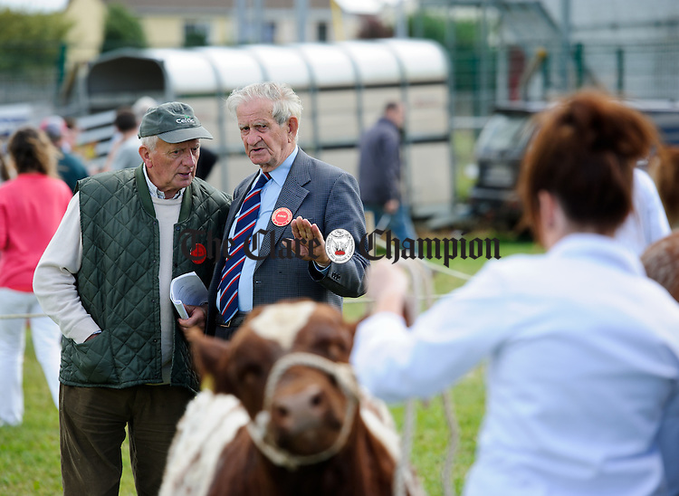 Stock judges Tommy O Driscoll and Christy Kelly in action at the Clare County Show in Ennis. Photograph by John Kelly.