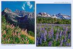 Glacier National Park, Montana (left) and Sneffels Range, Colorado (right) John guides custom photo tours in the Sneffels Range and throughout Colorado.