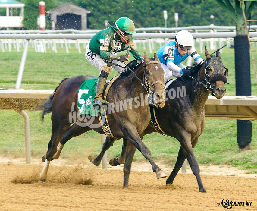 Our Rombauer winning The First State Dash  at Delaware Park on 9/10/16